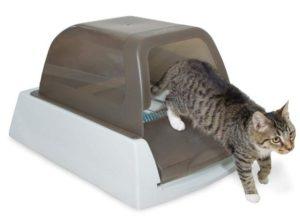 robot cat litter box
