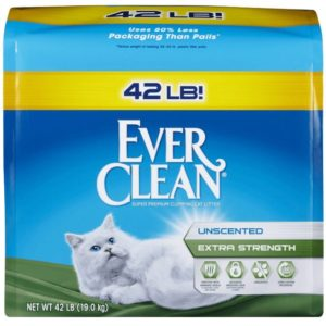 best non clay cat litter