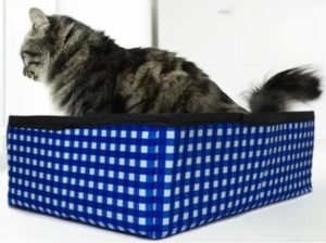 outdoor cat litter box