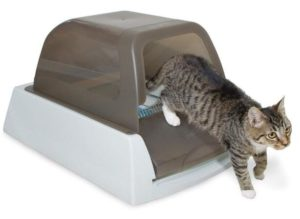 automatic cat litter box reviews