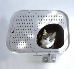 automatic cat litter box