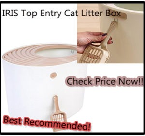 best cat litter box review