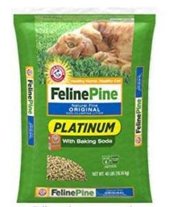 natural cat litter brands