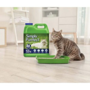 best cat litter for the price