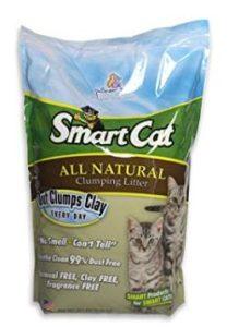 best natural cat litter reviews