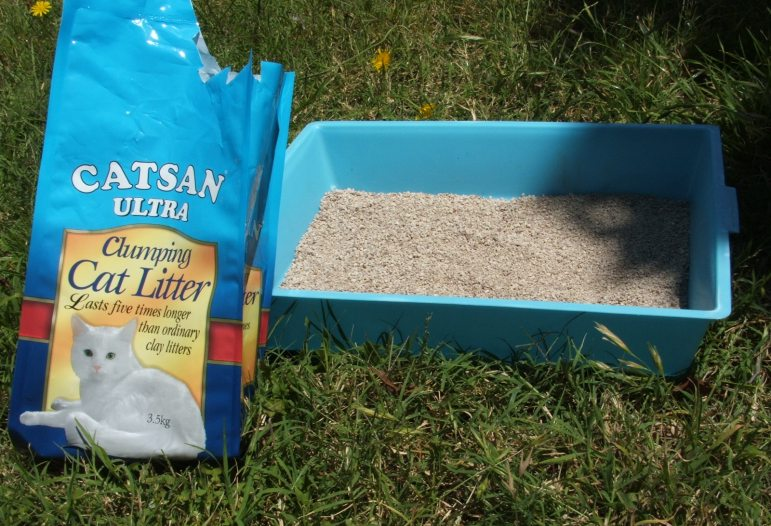 world's best cat litter price