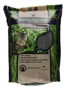natural cat litter alternatives