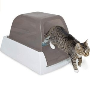 cat litter for automatic litter boxes