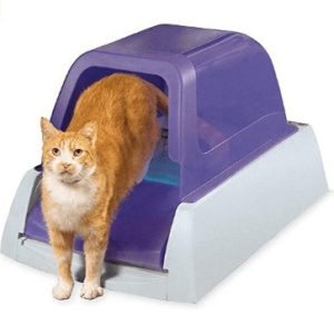 best automatic cat litter box for multiple cats
