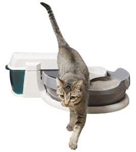 best cat litter for automatic litter box