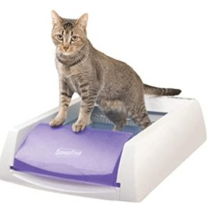 best automatic litter box for big cats