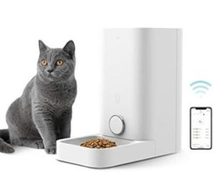 petmate automatic cat feeder