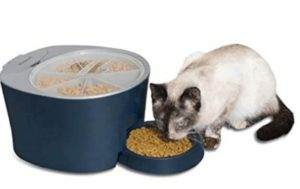 small automatic cat feeder