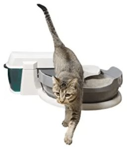 extra large litter box multiple cats