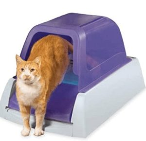 automatic kitty litter box for multiple cats