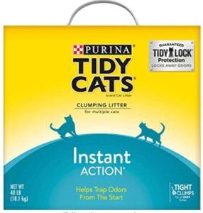best clumping cat litter for odor