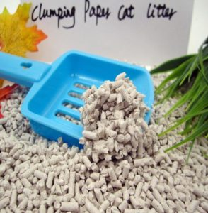 low dust cat litter reviews