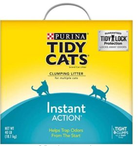 best cat litter for urine absorption