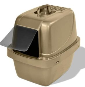 cat litter box for cat humidity
