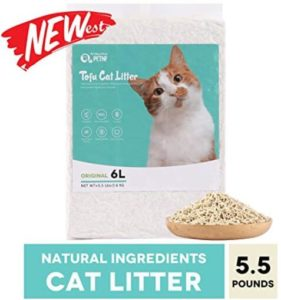 best cat litter for urine odor control