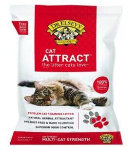 good cat litter for kittens