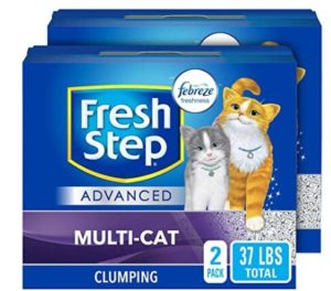 best cat litter for indoor cats
