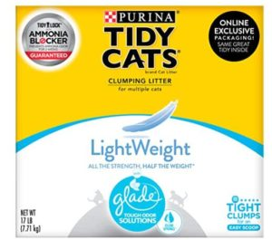 best indoor cat litter