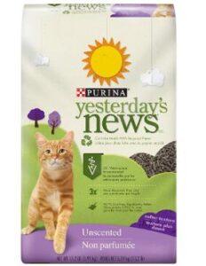 best cat litter for kittens reviews