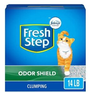 best rated cat litter for odor control