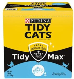 the best cat litter for odor control