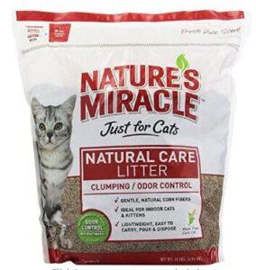best cat litter for urine odor