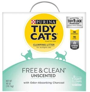 cat litter for odor and dust control