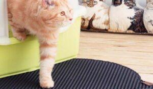 rubber cat litter mat