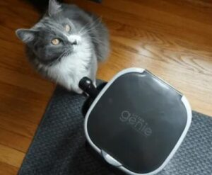 litter genie cat litter disposal system