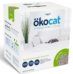best kitty litter for cats with allergies