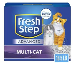 cat litter for multiple cats