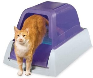 PetSafe ScoopFree Ultra Self Cleaning for three cats