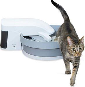 petsafe simply clean cat litter box