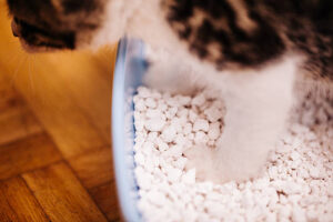 which mineral is used to make kitty litter