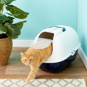 large covered litter box for large cats