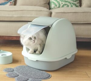 best covered cat litter box for large cats