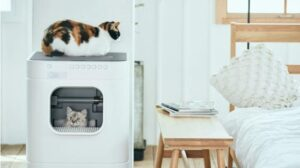 What Are The Features of Electric Litter Box for Multiple Cats