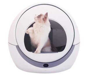 best self cleaning kitty litter box