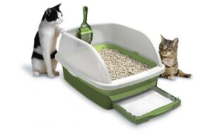 How to Make a Clumping Cat Litter