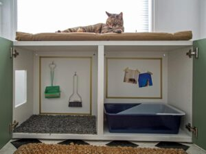How to Pick the Best Cat Litter Box for Small Spaces