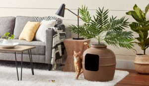 Features That Make the Best Cat Litter Boxes for Small Spaces