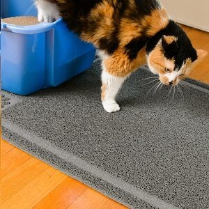 What Types of Cat Litter Boxes Are Suitable for Small Spaces