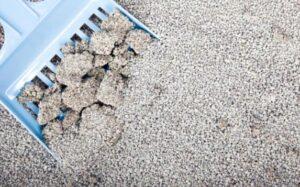 best ways to clean cat litter